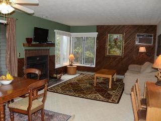 Wintergreen -- Beautiful 2BR/2BA - Great Rates - Wintergreen vacation rentals