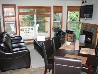 Snowbird Cabin - Burnaby vacation rentals