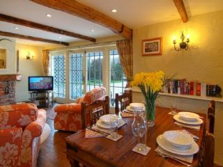 THE HAY BARN, Stoke Gabriel, Devon - Stoke Gabriel vacation rentals
