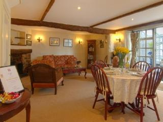 THE BARN, Stoke Gabriel, Devon - Stoke Gabriel vacation rentals
