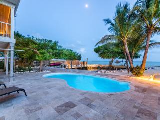 Sandy Beach, Direct Ocean, Pool, Dock & Lagoon - Marathon vacation rentals