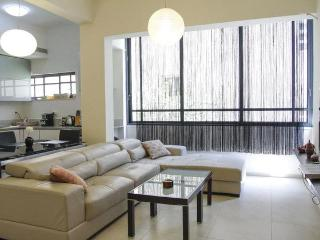 Luxury apartment, in city center! - Tel Aviv vacation rentals