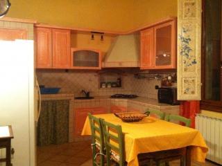CR108Chianti - Appartamento nel cuore del Chianti Toscano vicino San Gimignano - Castelfiorentino vacation rentals