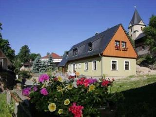 Guest Rooms in Unterwürschnitz - grill, great views, pets allowed (# 3547) - Saxony vacation rentals