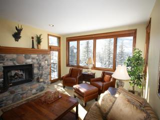 Most Convenient Location for Ski School! - Beaver Creek vacation rentals