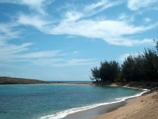 2 BR Apartment for 6 in Isabela- Beach, Surf, Fun! - Rincon vacation rentals