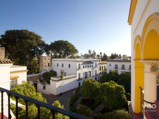 Murillo Terrace. Top-floor apartment in Santa Cruz - Province of Seville vacation rentals