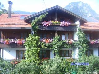 Vacation Apartment in Bad Hindelang - 646 sqft, allergy-friendly, quiet, central (# 3553) - Schwangau vacation rentals