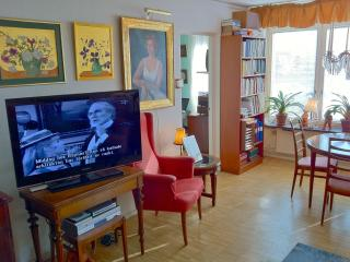 The Oriental Room in a large Apartment, Södermalm - Stockholm vacation rentals