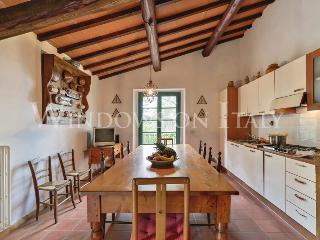 1540 - Arezzo vacation rentals