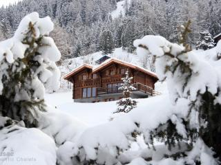 Large Ski-in/out upmarket chalet  Hammam & Jacuzzi - Nendaz vacation rentals