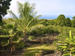 Kope Mahi Vacation Home - Honaunau vacation rentals