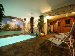 Maisonette, balcony, private use indoor pool+sauna - Ediger-Eller vacation rentals