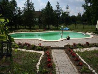 Luxury House with Pool Tisza Lake - Tiszaujvaros vacation rentals
