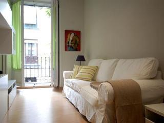 LA LATINA, APT. CAVA BAJA 2 PLAZA MAYOR, IN THE HEART IN MADRID - Madrid vacation rentals