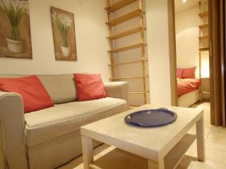 APARTAMENT IN OLAVIDE SQUARE - Madrid vacation rentals