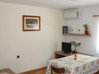 In center of Zagreb with big garden,free parking - Zagreb vacation rentals