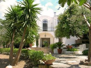 Villa Luna - Anacapri, Capri Island - Campania - Positano vacation rentals