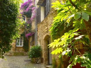 Old Stone House With Terrace By Medieval Castle - Cagnes-sur-Mer vacation rentals