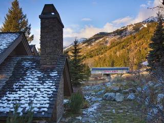 Slopeside Apres Vous - Teton Village vacation rentals