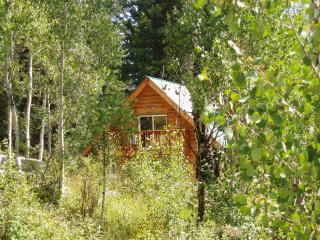 Aspen Chalet - Surrounded by Aspen Trees and Woods - Southwest Colorado vacation rentals