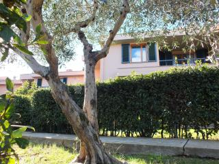 Giovanna Chianti House - Chianti vacation rentals
