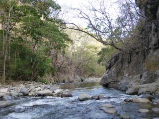 Rancho el Rio-A Natural Paradise/Farm Combination - Monteverde Cloud Forest Reserve vacation rentals