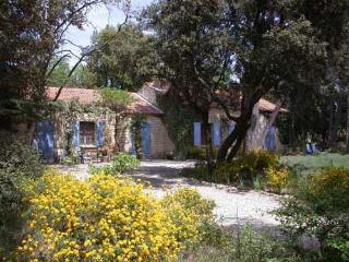 La Tres Grande Peyriere - Stone Villa With Pool - large wooded property - 3 bedrooms - - Sarrians vacation rentals