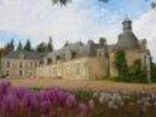 Chateau de La Noue near Tours and Amboise - Troo vacation rentals