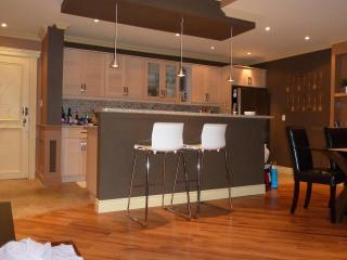 MUST SEE! 3 Bedroom Penthouse downtown Mississauga - Ontario vacation rentals