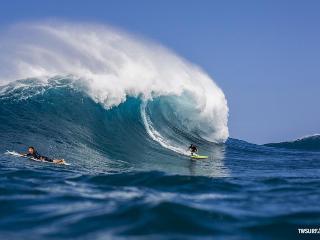 L Surfer ground floor parking Breakfast Supplies - Kailua-Kona vacation rentals