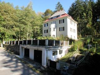 Vila Orava - Marianske Lazne vacation rentals
