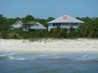 50% off Last 2 Weeks Aug-BeachFront-Pool-3 Palms - Port Saint Joe vacation rentals