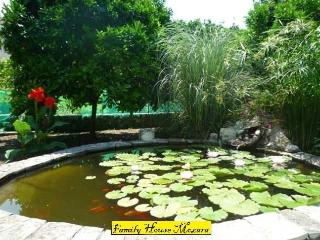 Family house Mozara - Slano vacation rentals