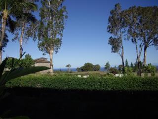 Ocean View, Discount Golf, Clean, Central located - Waikoloa vacation rentals