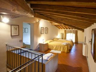 Fabbro - Rapolano Terme vacation rentals