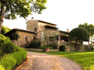 Edera - Castellina In Chianti vacation rentals