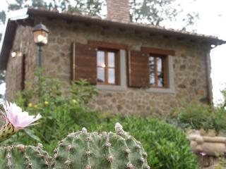 Cottage Il Poggiolino - Loro Ciuffenna vacation rentals