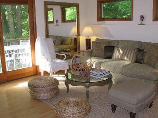 Catskill Ski / Wedding / Vacation - Hamden vacation rentals