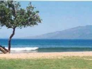 Honokowai Beach - Cozy Maui Condo near Kaanapali! - Ka'anapali - rentals