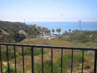 Beach front condo;  WE ONLY RENT BY THE MONTH - Orange County vacation rentals