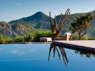 Incomparable Villa Rose offers ocean views, large pool and gazebo - Gouverneur vacation rentals