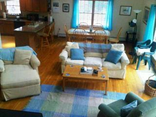 PET FRIENDLY ,EDGARTOWN 3bdrm -Open JULY & AUG! - Vineyard Haven vacation rentals
