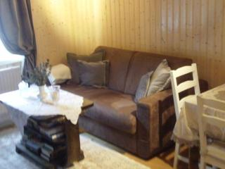 Cozy apartment downtown Isafjordur - Thingeyri vacation rentals