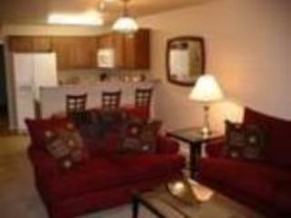 THE BEST PLACE TO STAY-TREEHOUSE CONDO - Image 1 - New Braunfels - rentals