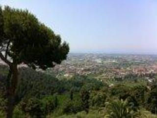 View from the garden - Il Frantoio - Camaiore - rentals