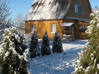 Log Cabin in National Park Braslav Lakes - Braslaw vacation rentals