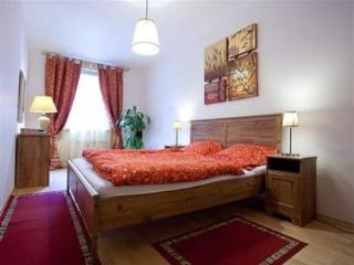Smichov Apartment - Prague vacation rentals