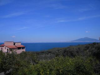 Villa Rosmary, Where the Sea and Sky Embrace - Massa Lubrense vacation rentals