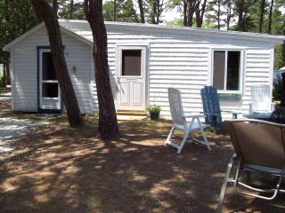 Brownies Cabin #1 - Wellfleet vacation rentals